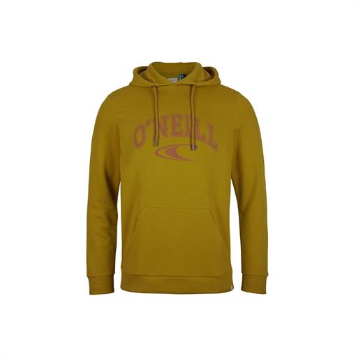 O'NEILL STATE HOODIE 2021